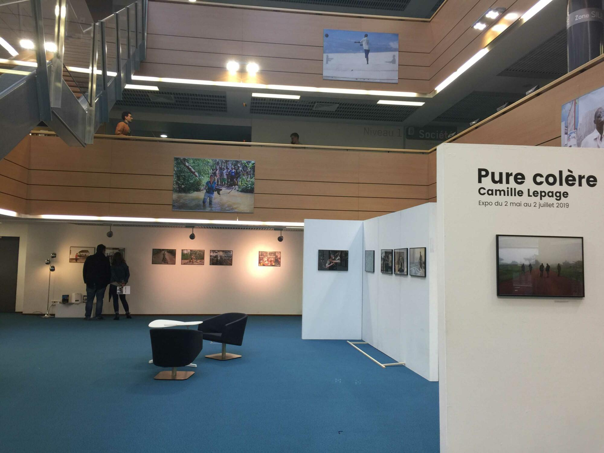"Exposition ""Pure colère"""
